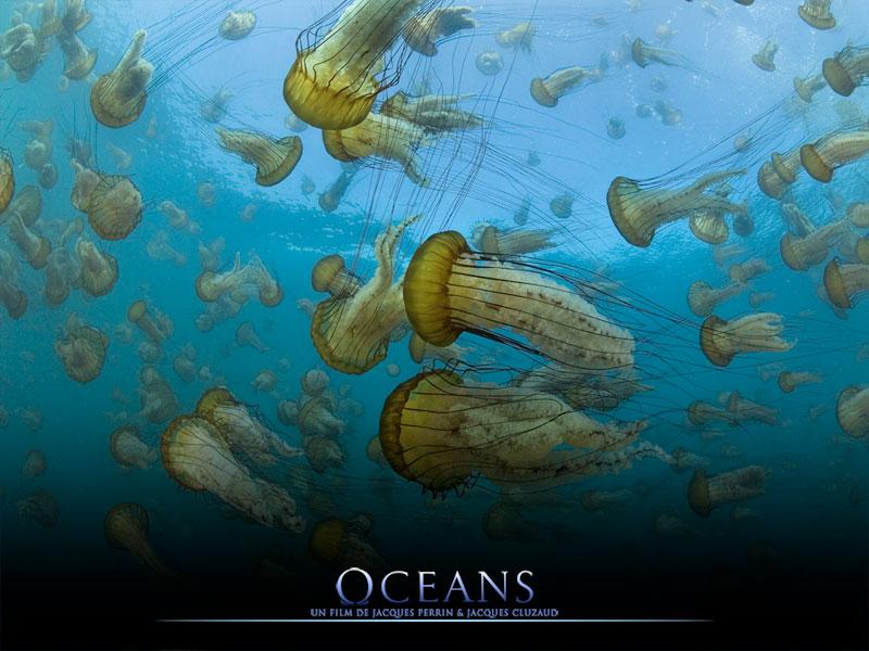 OCEANs- le film